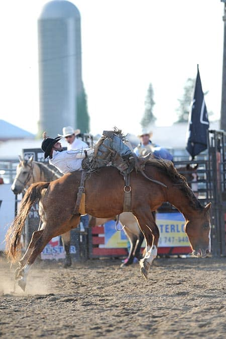 Cowboys and cowgirls return to Breslau on Aug. 26 for the annual Case IH Ultimate Rodeo Tour at Calhoun Stables in support of the Canadian Diabetes Association.[file photo]