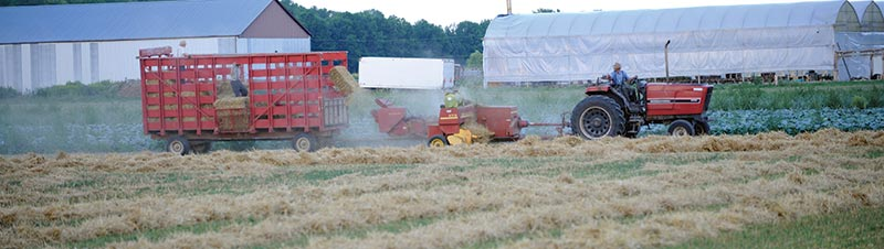 A farmer on Line 86 outside of Elmira harvests his hay field, turning them into square bales on Tuesday evening.[Whitney Neilson / The Observer]