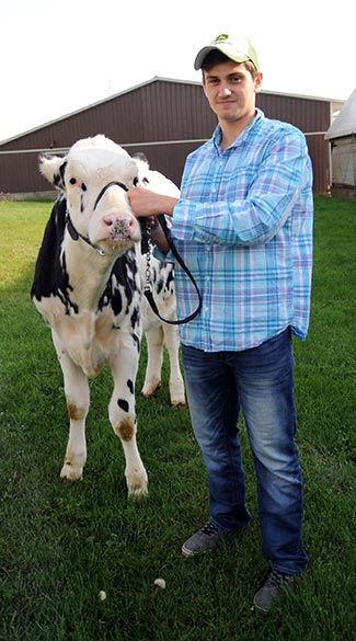 ayden Hipel of Maryhill will be showing his heifer, Merry, in the Canadian 4-H Dairy Classic.
