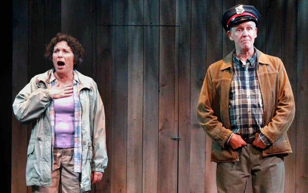 Retiring from the farm to the city, a couple finds everything isn't as it appears in Drayton theatre's production of Harvest